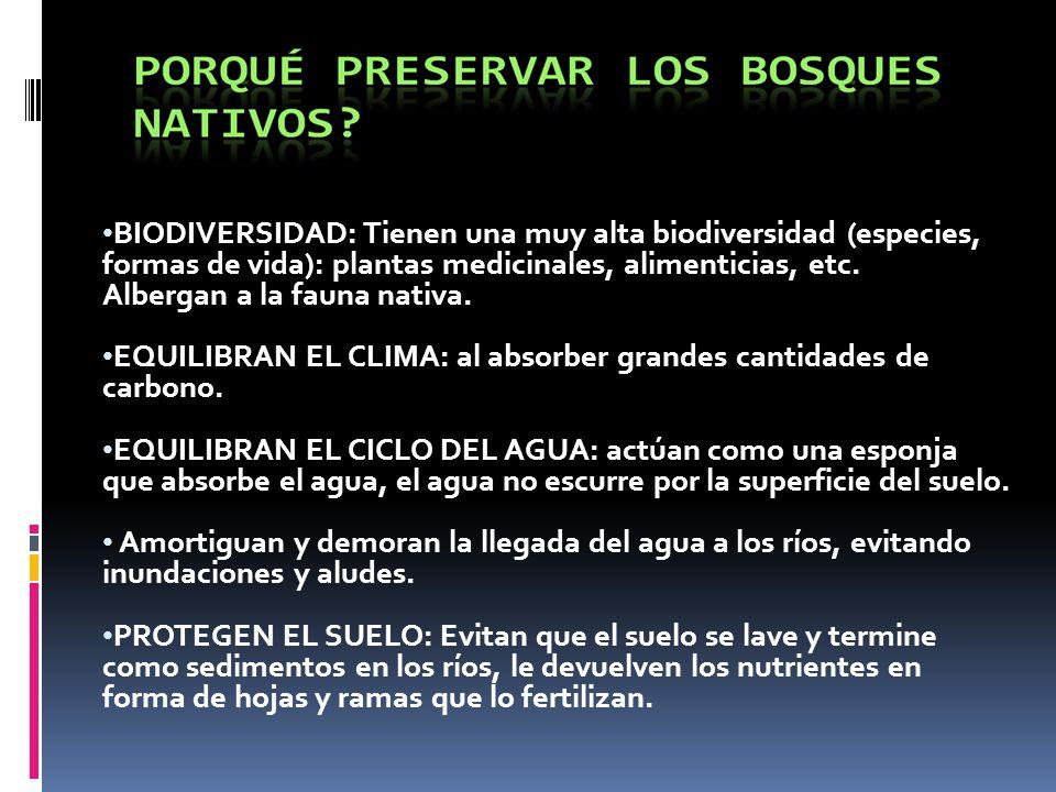 La Ley de Bosques y los Pueblos Originarios Cap.5.