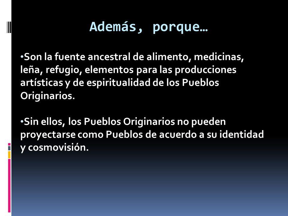 Son la fuente ancestral de alimento, medicinas, leña, refugio, elementos para las producciones artísticas y de espiritualidad de los Pueblos Originari