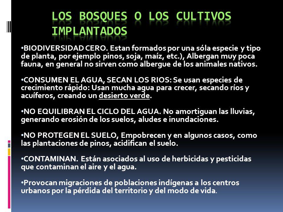 Los bosques nativos de la Argentina En Argentina tenemos: - La yunga - El espinal - El bosque chaqueño - La selva misionera - Los bosques andino patagónicos - El monte