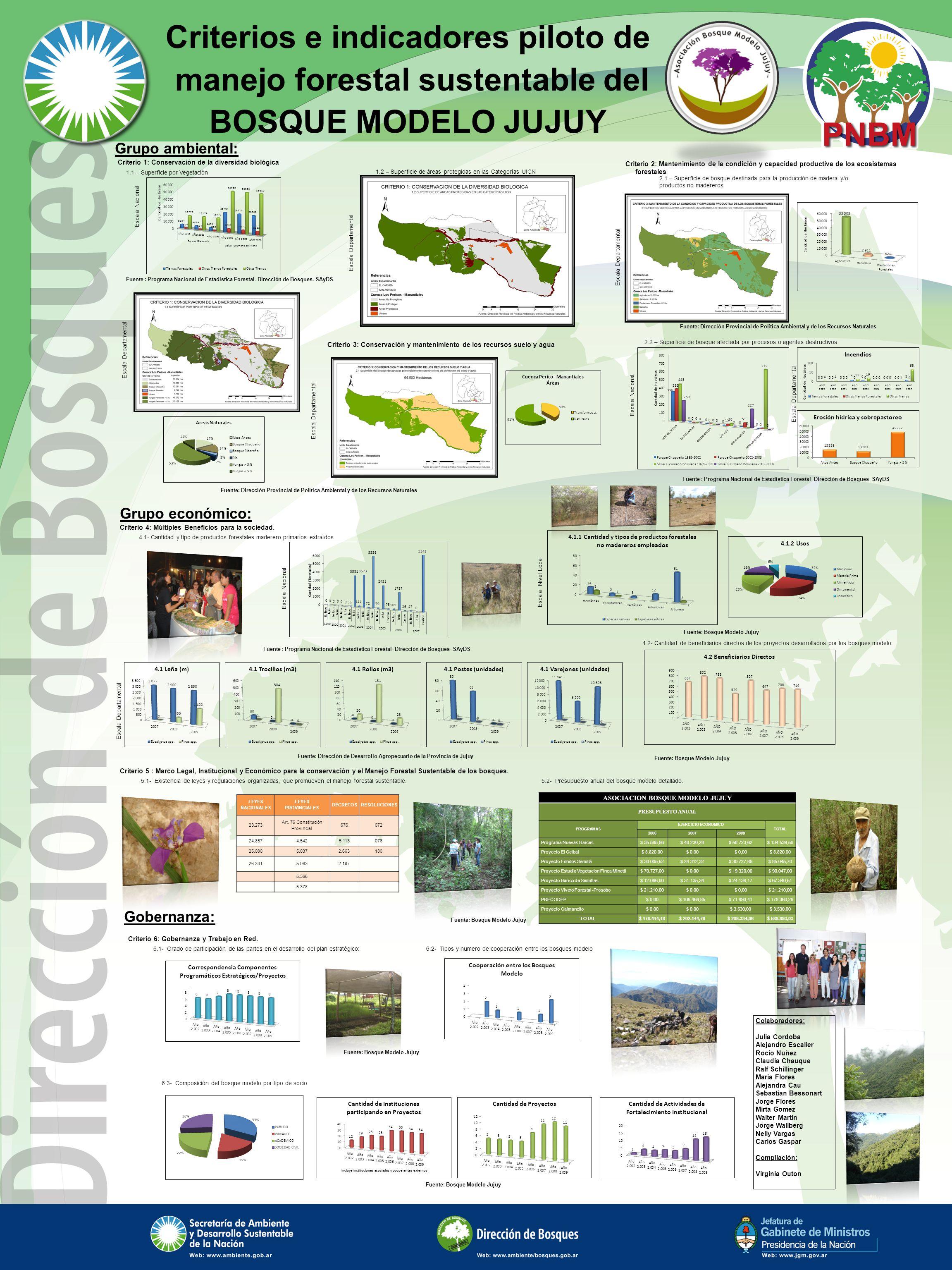 Criterios e indicadores piloto de manejo forestal sustentable del BOSQUE MODELO JUJUY Grupo ambiental: Grupo económico: Gobernanza: 4.1- Cantidad y ti