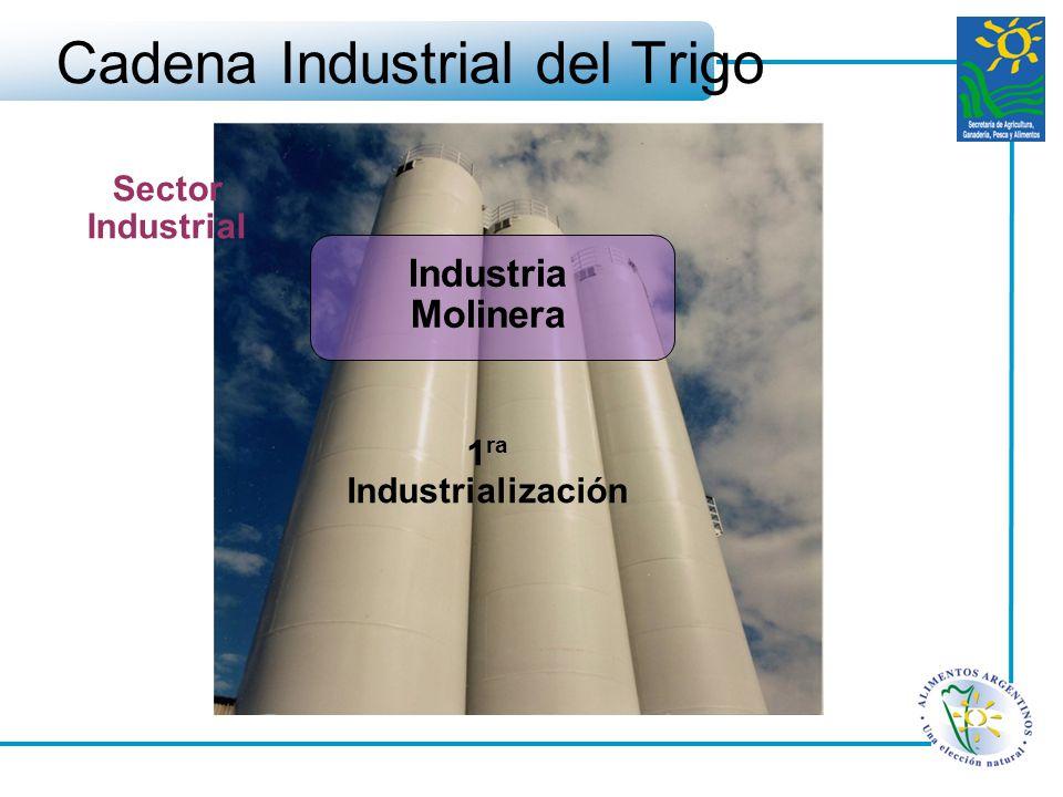 Cadena Industrial del Trigo Industria Molinera 1 ra Industrialización Sector Industrial