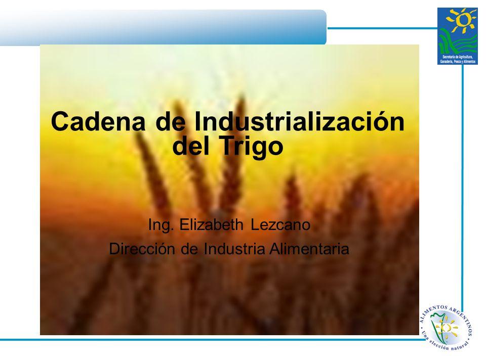 Ing. Elizabeth Lezcano Dirección de Industria Alimentaria Cadena de Industrialización del Trigo