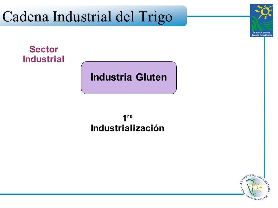 Cadena Industrial del Trigo Industria Gluten Sector Industrial 1 ra Industrialización