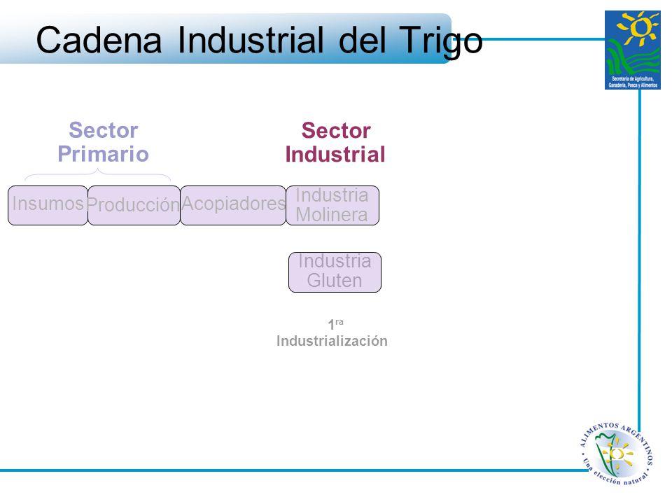 Cadena Industrial del Trigo Sector Primario Insumos Producción Acopiadores Industria Molinera Sector Industrial 1 ra Industrialización Industria Glute