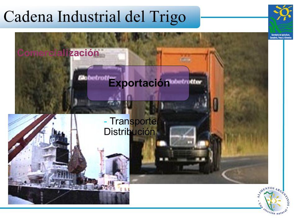 Cadena Industrial del Trigo - Transporte/ Distribución Exportación Comercialización