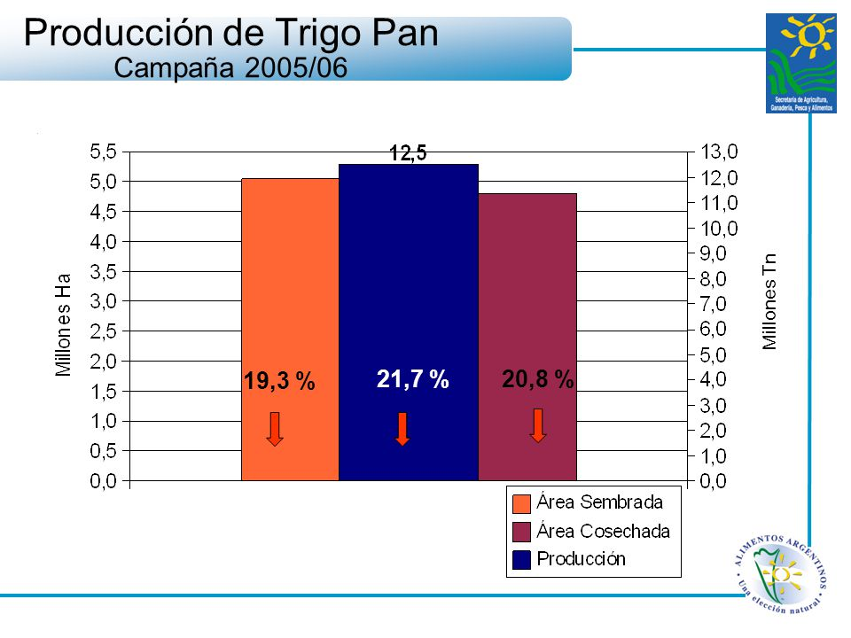 Producción de Trigo Pan Campaña 2005/06 19,3 % 21,7 % 20,8 % Millones Tn