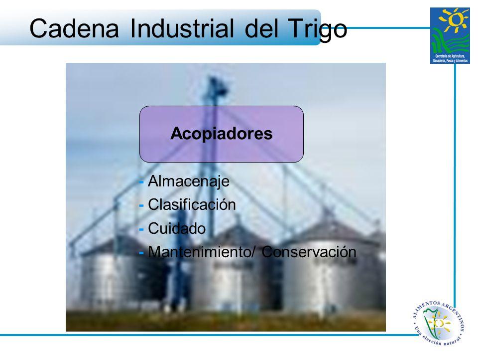Cadena Industrial del Trigo - Almacenaje - Clasificación - Cuidado - Mantenimiento/ Conservación Acopiadores