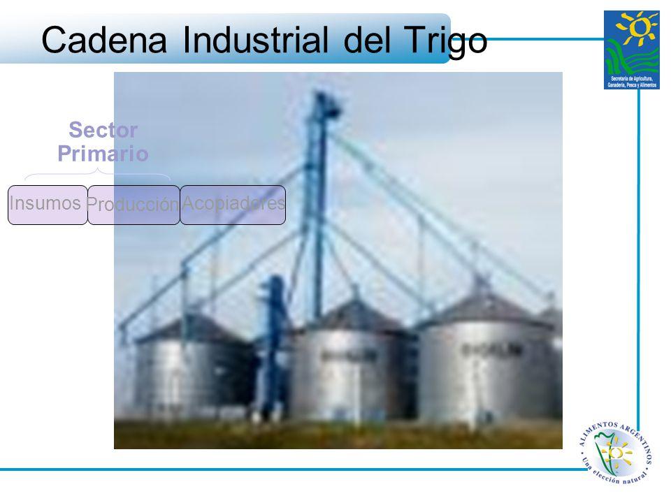 Cadena Industrial del Trigo Insumos Acopiadores Producción Sector Primario