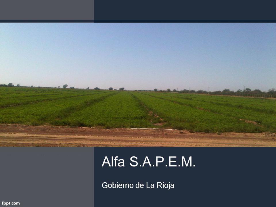 Alfa S.A.P.E.M. Gobierno de La Rioja