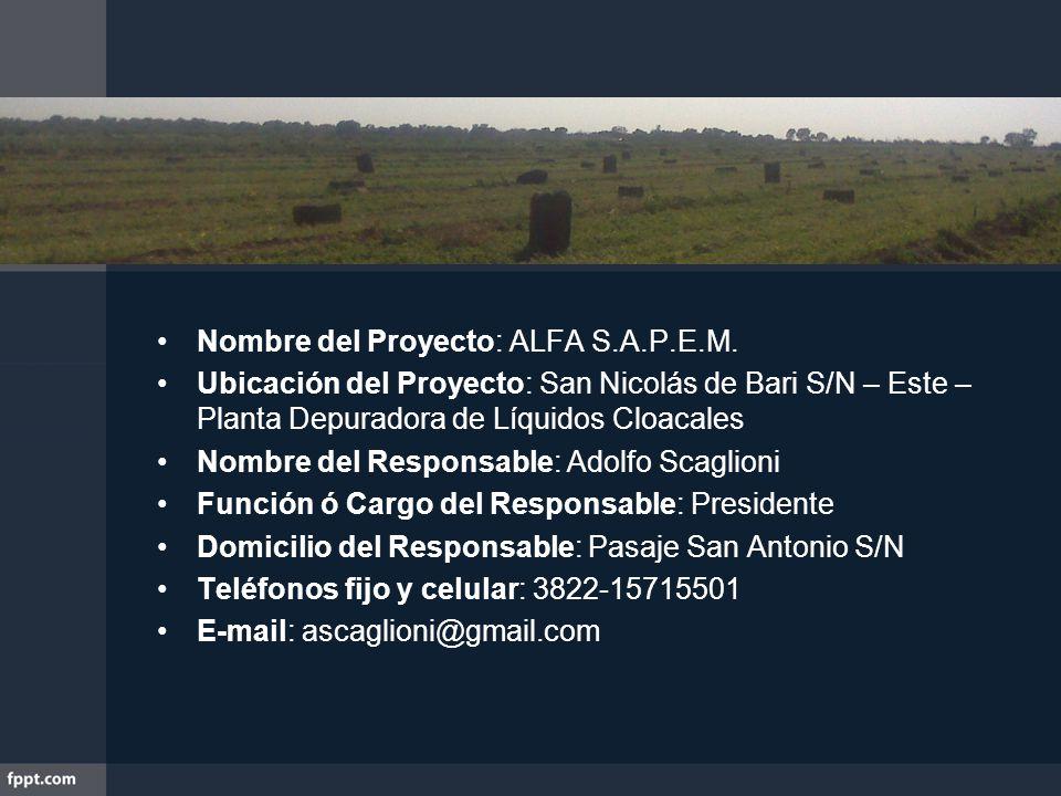 Nombre del Proyecto: ALFA S.A.P.E.M. Ubicación del Proyecto: San Nicolás de Bari S/N – Este – Planta Depuradora de Líquidos Cloacales Nombre del Respo