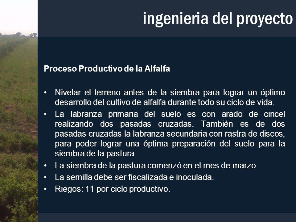 Proceso Productivo de la Alfalfa Nivelar el terreno antes de la siembra para lograr un óptimo desarrollo del cultivo de alfalfa durante todo su ciclo