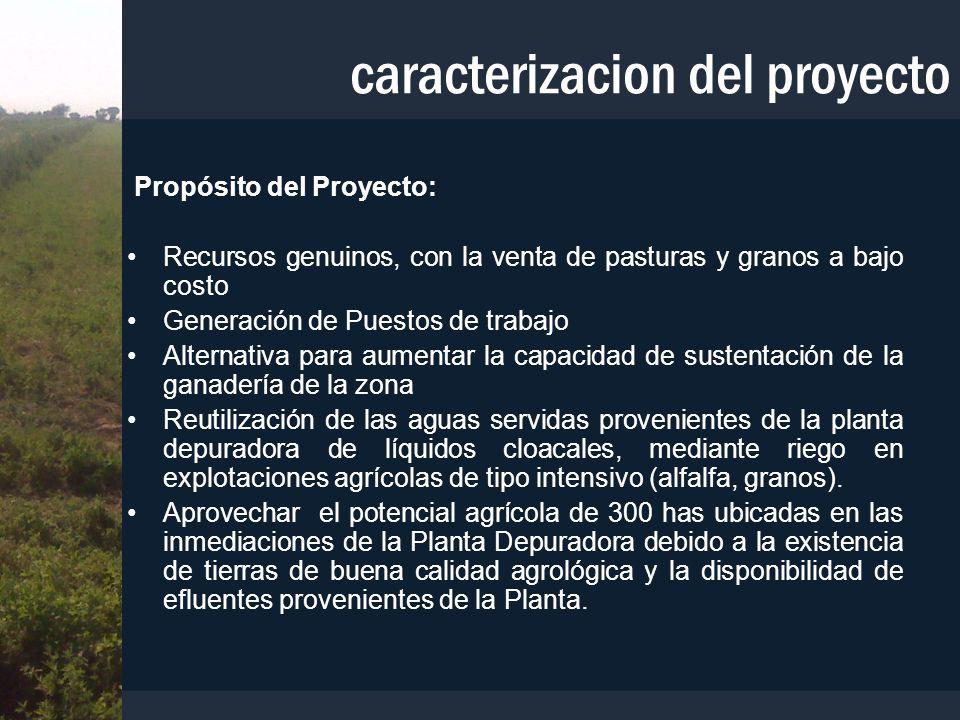 Propósito del Proyecto: Recursos genuinos, con la venta de pasturas y granos a bajo costo Generación de Puestos de trabajo Alternativa para aumentar l