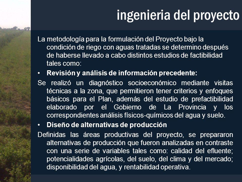 ingenieria del proyecto La metodología para la formulación del Proyecto bajo la condición de riego con aguas tratadas se determino después de haberse