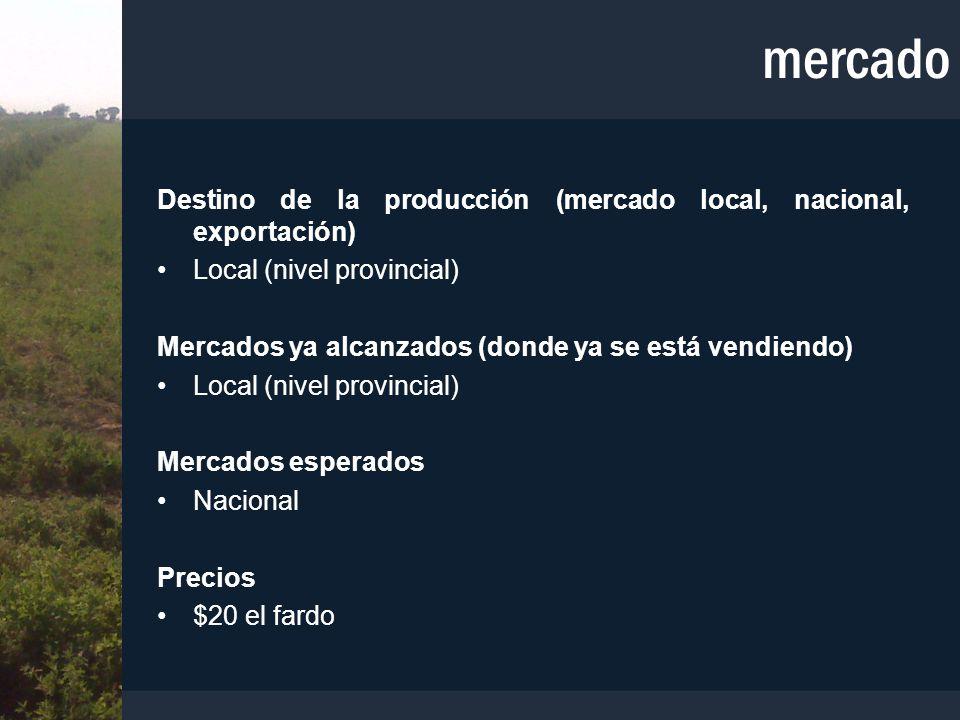 mercado Destino de la producción (mercado local, nacional, exportación) Local (nivel provincial) Mercados ya alcanzados (donde ya se está vendiendo) L