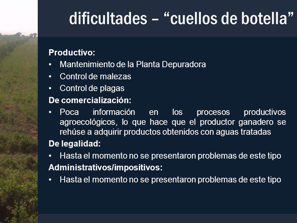 dificultades – cuellos de botella Productivo: Mantenimiento de la Planta Depuradora Control de malezas Control de plagas De comercialización: Poca inf