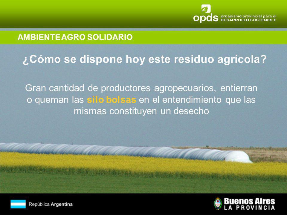 AMBIENTE AGRO SOLIDARIO ¿Cómo se dispone hoy este residuo agrícola.