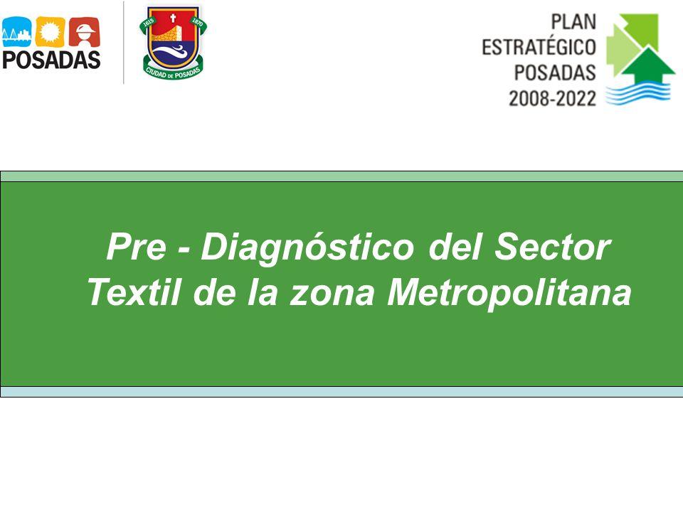 Pre - Diagnóstico del Sector Textil de la zona Metropolitana