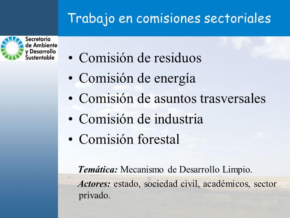 Trabajo en comisiones sectoriales Comisión de residuos Comisión de energía Comisión de asuntos trasversales Comisión de industria Comisión forestal Temática: Mecanismo de Desarrollo Limpio.