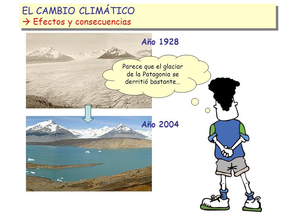 100 cm.5 EL CAMBIO CLIMÁTICO Efectos y Consecuencias EL CAMBIO CLIMÁTICO Efectos y Consecuencias Si la Tierra sigue calentándose como hasta ahora, en 100 años el mar subirá de 10 cm.