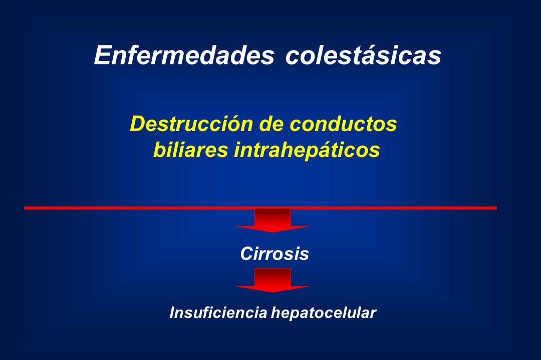 Enfermedades colestásicas Destrucción de conductos biliares intrahepáticos Cirrosis Insuficiencia hepatocelular