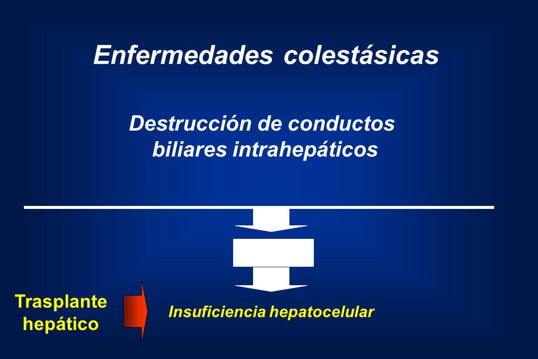 Enfermedades colestásicas Destrucción de conductos biliares intrahepáticos Cirrosis Insuficiencia hepatocelular Trasplante hepático