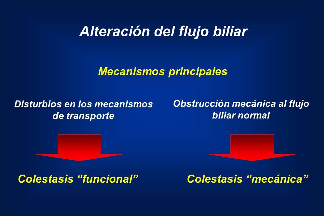 Alteración del flujo biliar Disturbios en los mecanismos de transporte Obstrucción mecánica al flujo biliar normal Colestasis funcionalColestasis mecá