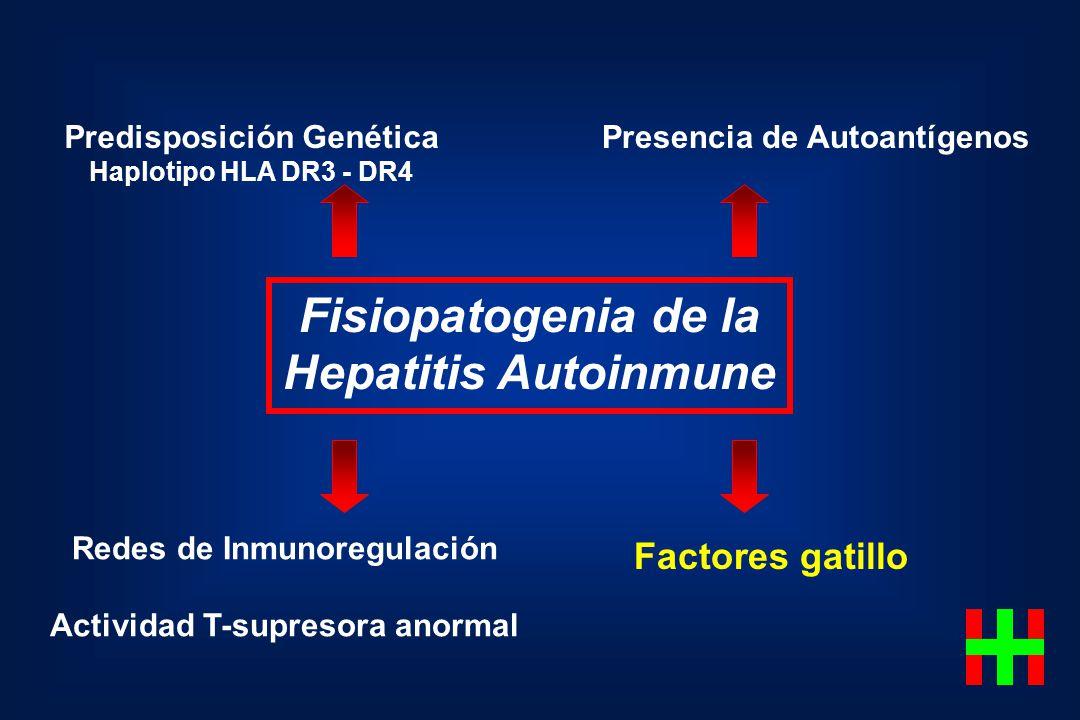 Fisiopatogenia de la Hepatitis Autoinmune Predisposición Genética Haplotipo HLA DR3 - DR4 Presencia de Autoantígenos Redes de Inmunoregulación Activid