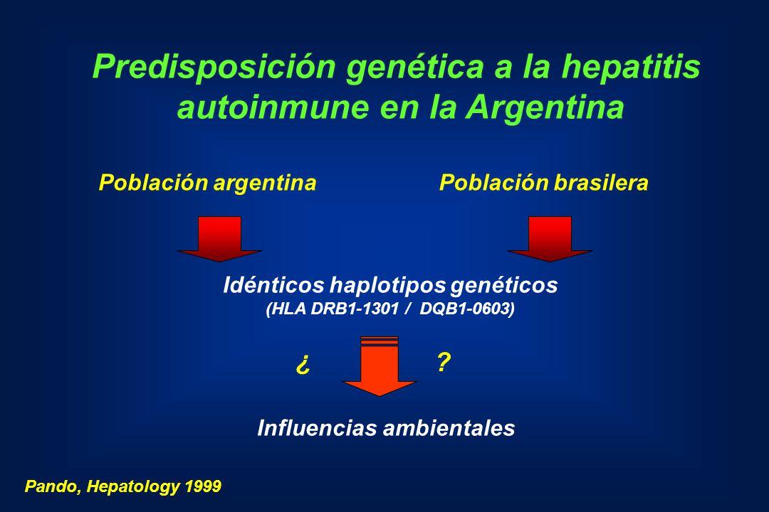 Predisposición genética a la hepatitis autoinmune en la Argentina Población argentinaPoblación brasilera Idénticos haplotipos genéticos (HLA DRB1-1301