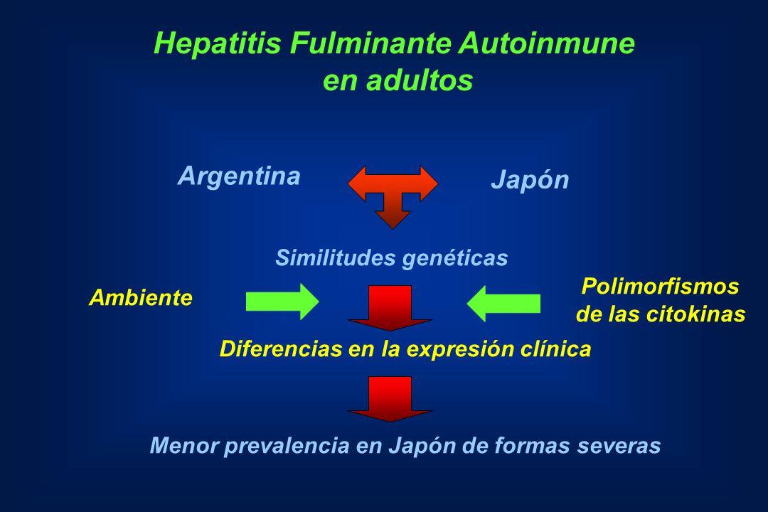 Hepatitis Fulminante Autoinmune en adultos Argentina Japón Similitudes genéticas Diferencias en la expresión clínica Menor prevalencia en Japón de for