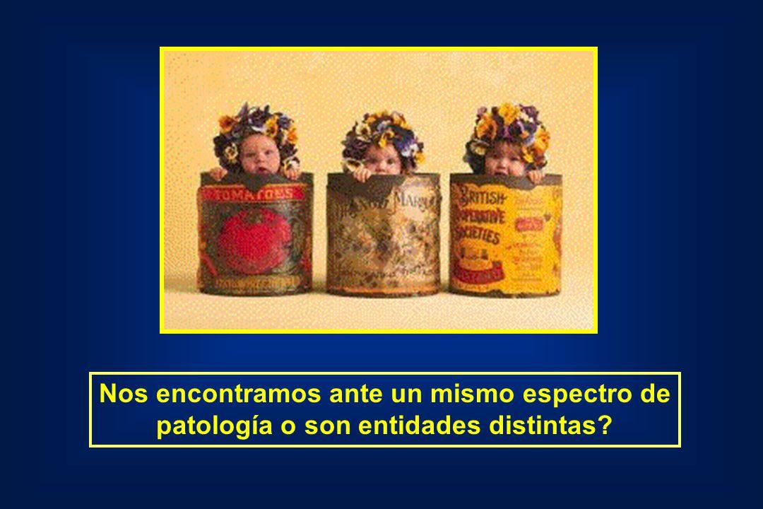 Predisposición genética a la hepatitis autoinmune en la Argentina Población argentinaPoblación brasilera Idénticos haplotipos genéticos (HLA DRB1-1301 / DQB1-0603) Pando, Hepatology 1999 Influencias ambientales .