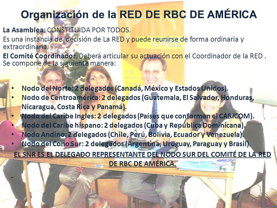 El domicilio de la RED será el de la Coordinación de la RED, y coincidirá con el país anfitrión donde se realicen los Congresos Continentales de la RED de RBC.