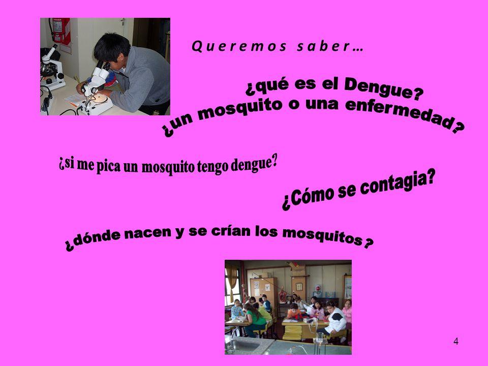 3 Durante el año 2009 alumnas/os que asistieron a los Clubes de Ciencias en la Escuela Nº 6 D.E. 8 y en el Centro Educativo Ramón Carrillo llevaron a