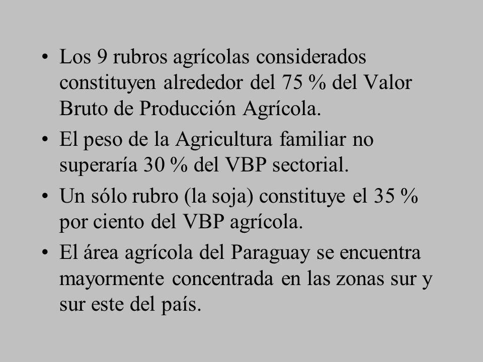 Los 9 rubros agrícolas considerados constituyen alrededor del 75 % del Valor Bruto de Producción Agrícola. El peso de la Agricultura familiar no super