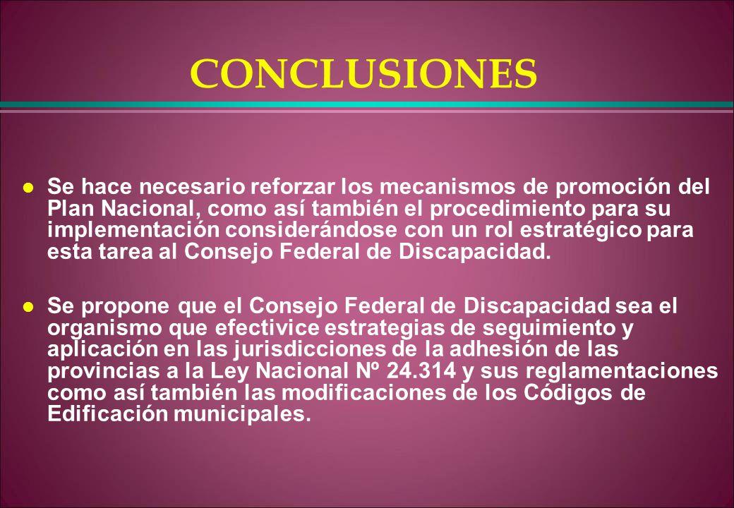 CONCLUSIONES l Se hace necesario reforzar los mecanismos de promoción del Plan Nacional, como así también el procedimiento para su implementación cons