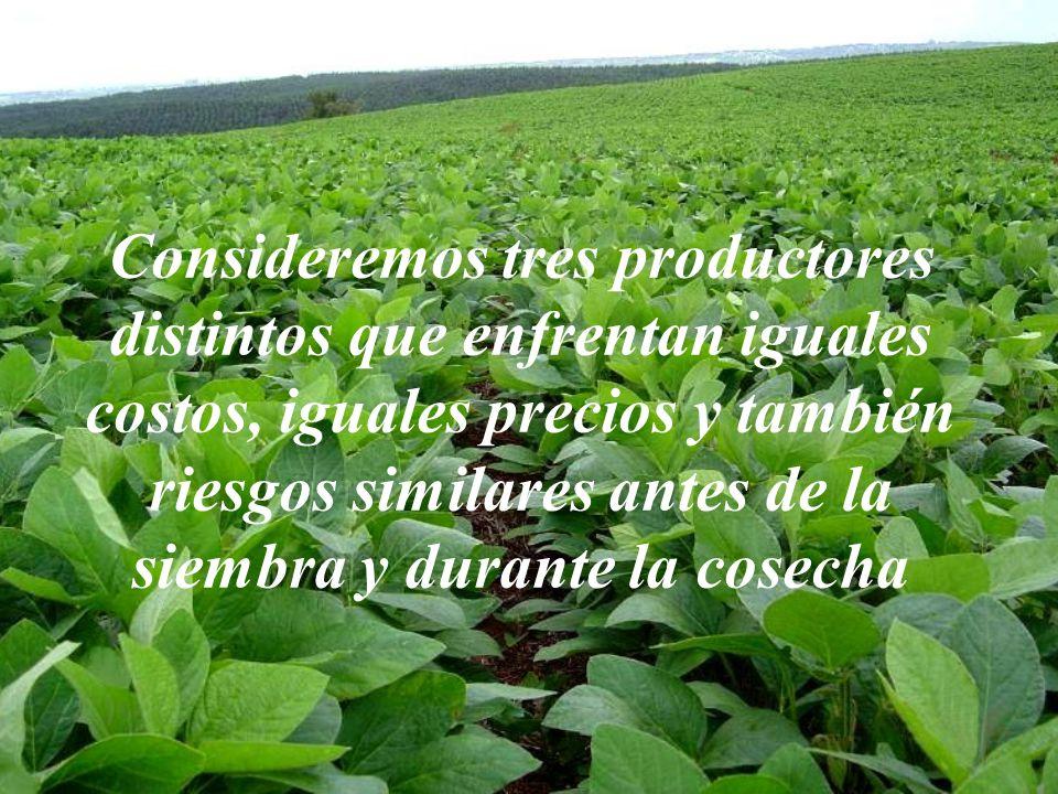 Consideremos tres productores distintos que enfrentan iguales costos, iguales precios y también riesgos similares antes de la siembra y durante la cosecha