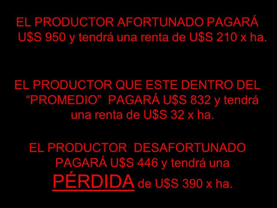 EL PRODUCTOR AFORTUNADO PAGARÁ U$S 950 y tendrá una renta de U$S 210 x ha.
