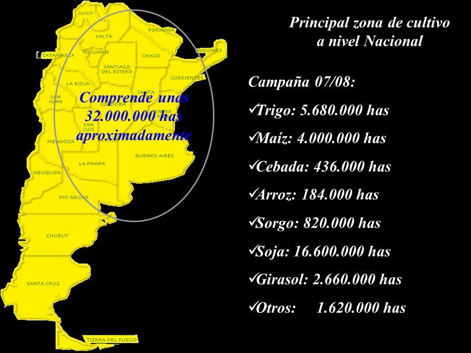 Principal zona de cultivo a nivel Nacional Comprende unas 32.000.000 has aproximadamente Campaña 07/08: Trigo: 5.680.000 has Maíz: 4.000.000 has Cebada: 436.000 has Arroz: 184.000 has Sorgo: 820.000 has Soja: 16.600.000 has Girasol: 2.660.000 has Otros: 1.620.000 has