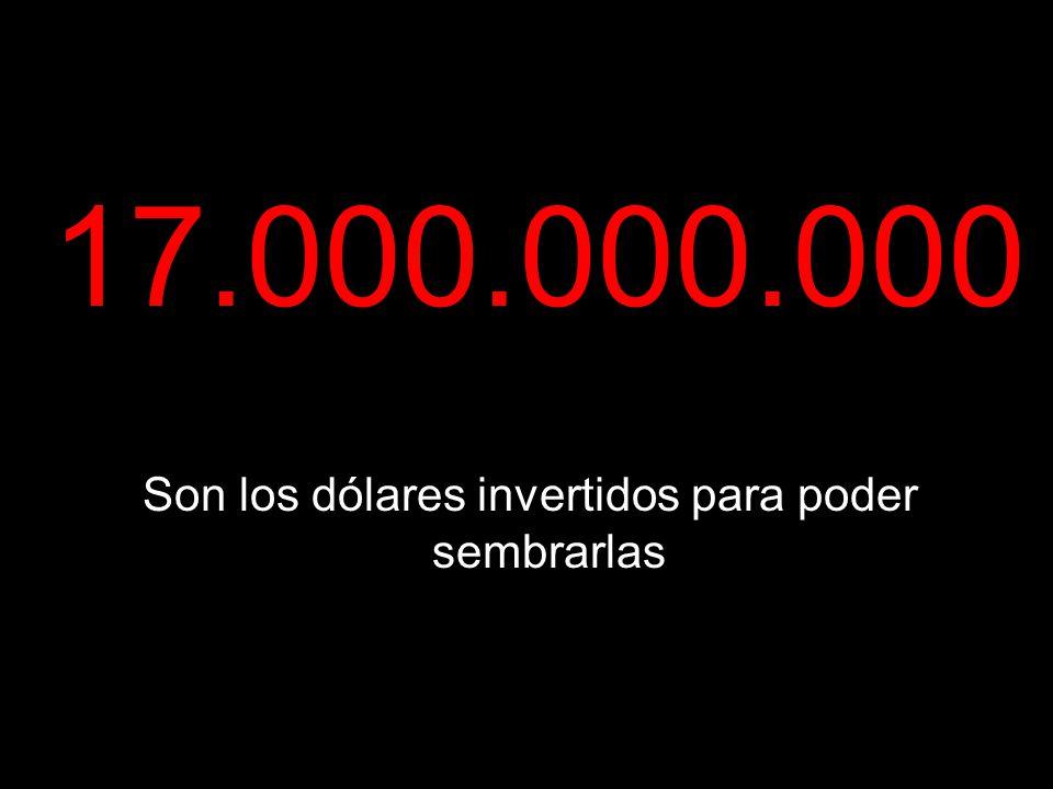 17.000.000.000 Son los dólares invertidos para poder sembrarlas