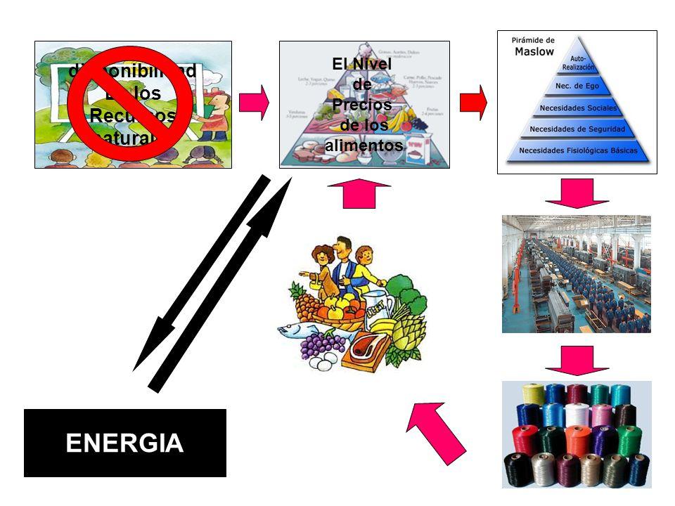 disponibilidad De los Recursos naturales El Nivel de Precios de los alimentos ENERGIA