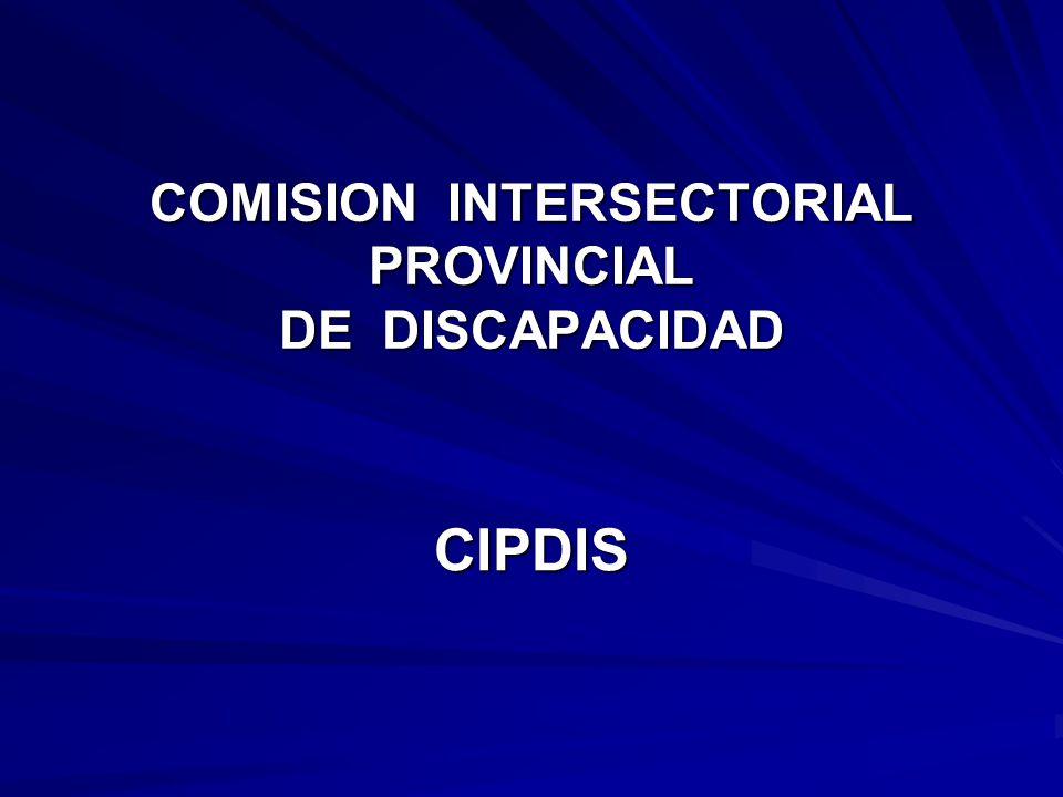 COMISION INTERSECTORIAL PROVINCIAL DE DISCAPACIDAD CIPDIS