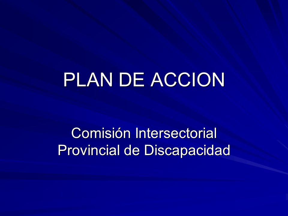 PLAN DE ACCION Comisión Intersectorial Provincial de Discapacidad