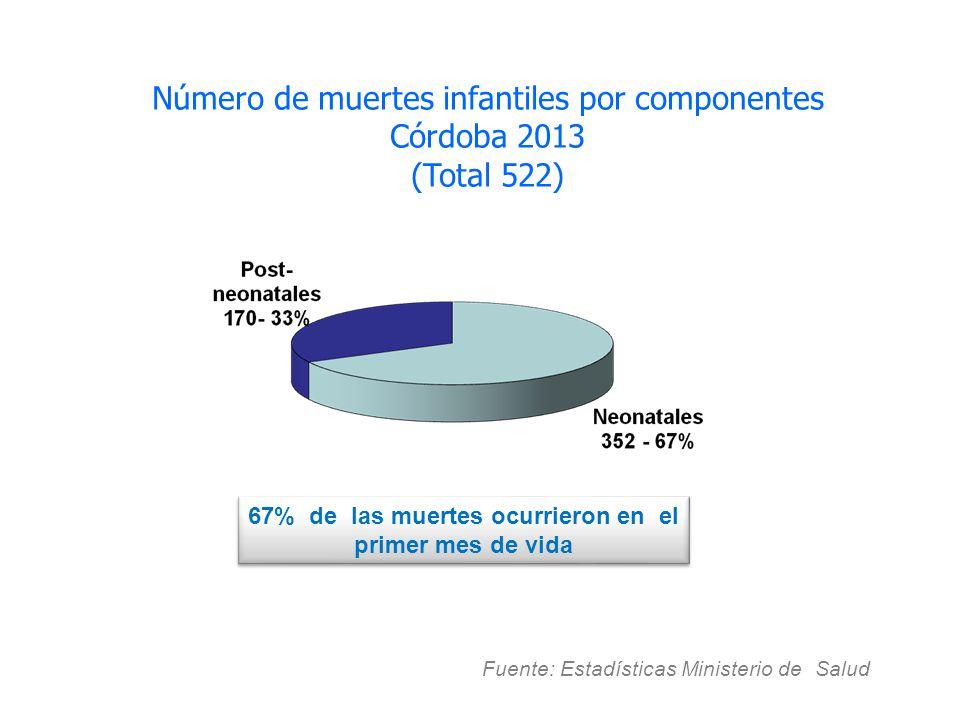 Fuente: Estadísticas Ministerio de Salud. Número de muertes infantiles por componentes Córdoba 2013 (Total 522) 67% de las muertes ocurrieron en el pr