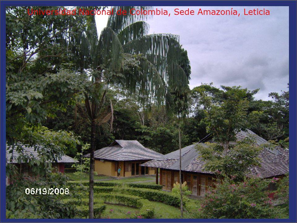. ESTACION IONOSFERICA TÌPICA DE RASTREO SATELITAL PERMANENTE Universidad Nacional de Colombia, Sede Amazonía, Leticia