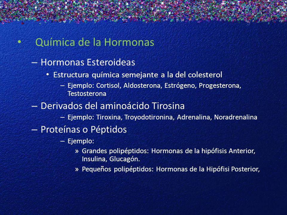 Química de la Hormonas – Hormonas Esteroideas Estructura química semejante a la del colesterol – Ejemplo: Cortisol, Aldosterona, Estrógeno, Progestero