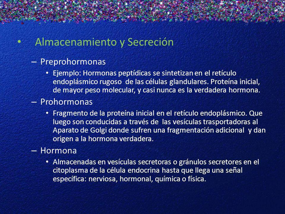 Hormonas de la Hipófisis Anterior 1.Hormona de Crecimiento 2.Adrenocorticotropina 3.Hormona Estimulante del Tiroides 4.Hormona Folículo-Estimulante 5.Hormona Luteinizante 6.Prolactina