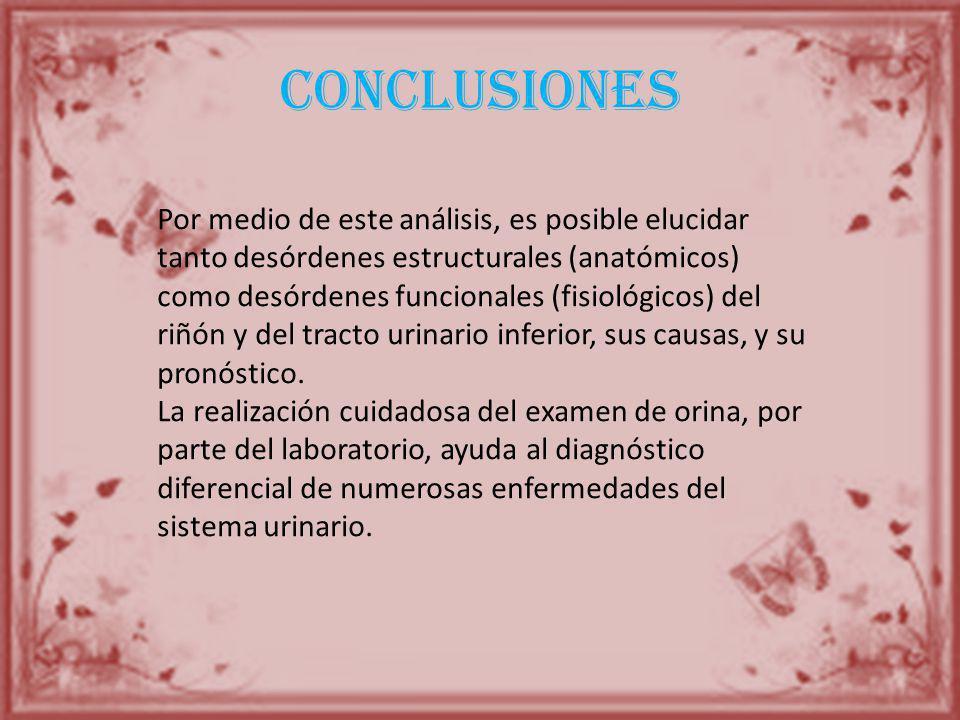 conclusiones Por medio de este análisis, es posible elucidar tanto desórdenes estructurales (anatómicos) como desórdenes funcionales (fisiológicos) de