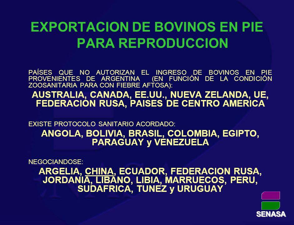EXPORTACION SEMEN BOVINO CONGELADO EXISTE PROTOCOLO SANITARIO ACORDADO: ANGOLA, BOLIVIA, BRASIL, COLOMBIA, ECUADOR, MARRUECOS, PANAMA, PARAGUAY, URUGUAY, VENEZUELA NEGOCIANDOSE: ARGELIA, AUSTRALIA, CHILE, CHINA, FEDERACION RUSA, LIBIA, MEXICO, PERU, SUDAFRICA, TUNEZ Y UCRANIA SENASA