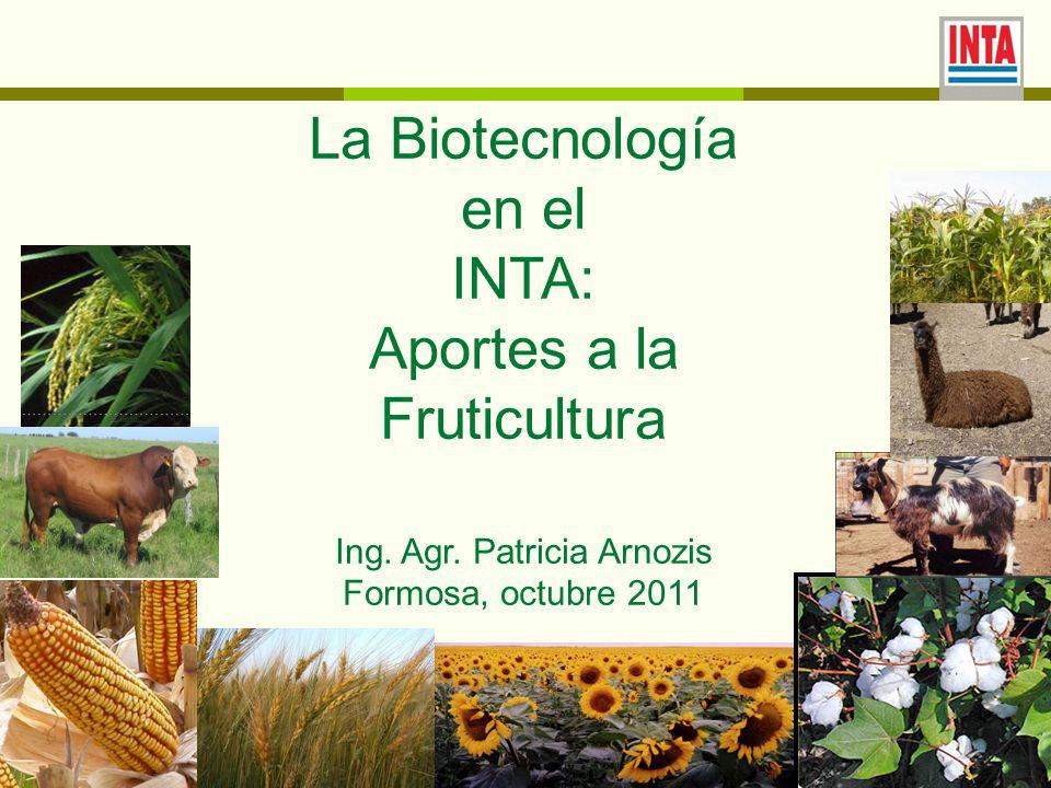 La Biotecnología en el INTA: Aportes a la Fruticultura Ing.
