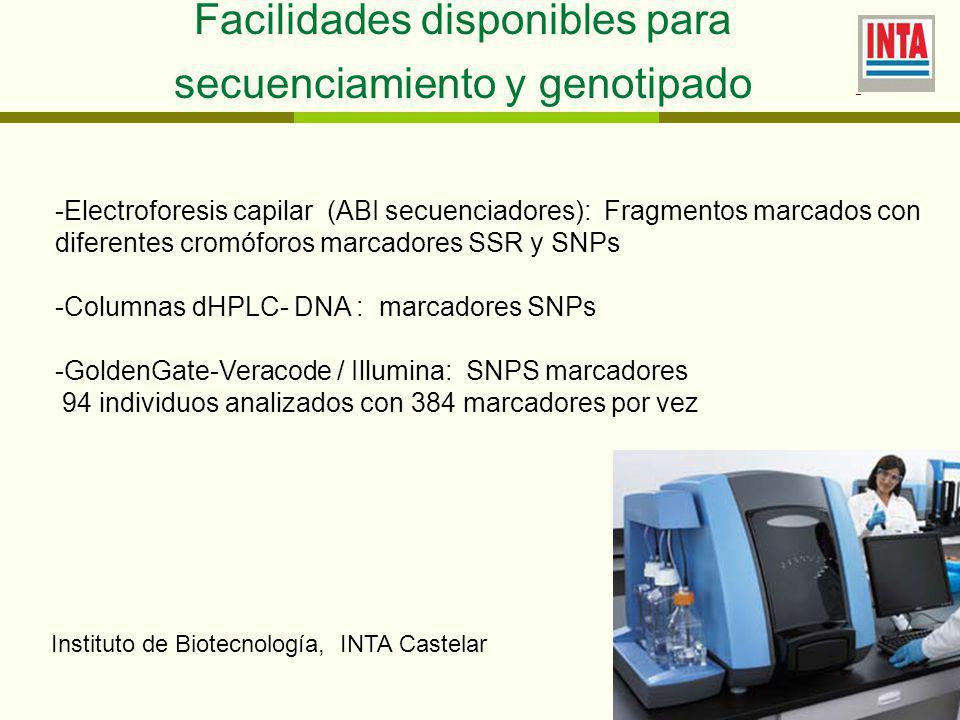 - Facilidades disponibles para secuenciamiento y genotipado -Electroforesis capilar (ABI secuenciadores): Fragmentos marcados con diferentes cromóforos marcadores SSR y SNPs -Columnas dHPLC- DNA : marcadores SNPs -GoldenGate-Veracode / Illumina: SNPS marcadores 94 individuos analizados con 384 marcadores por vez Instituto de Biotecnología, INTA Castelar