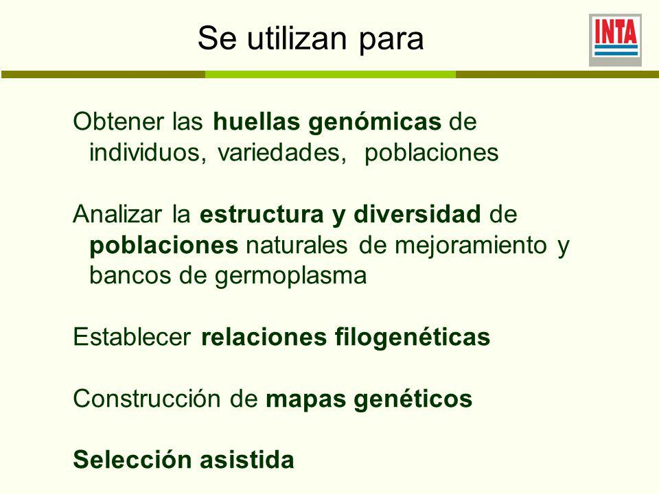 Se utilizan para Obtener las huellas genómicas de individuos, variedades, poblaciones Analizar la estructura y diversidad de poblaciones naturales de mejoramiento y bancos de germoplasma Establecer relaciones filogenéticas Construcción de mapas genéticos Selección asistida